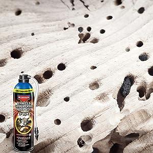 advance termiticide to kill bug