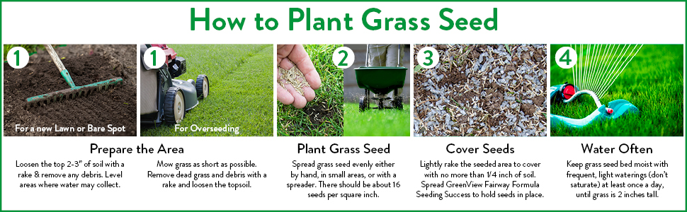 Greenview, grass seed, lawn seed, best grass seed, shady grass seed, how to plant grass seed