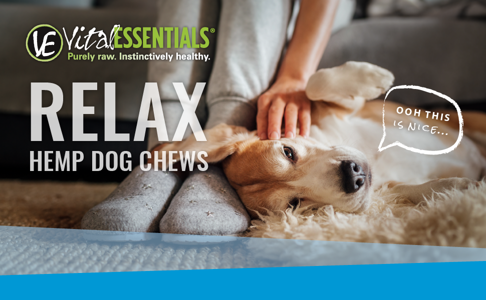 Amazon Com Vital Essentials Relax Freeze Dried Hemp Beef Chews For Dogs All Natural Usa Sourced Made Regulates Stress And Nervousness While Supporting Calmness 3 Oz Resealable Pouch 60 Chews Pet Supplies