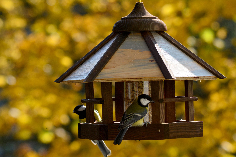 dobar 21390 vogelhaus camouflage zum aufh ngen aus holz mit futter silo braun beige grau. Black Bedroom Furniture Sets. Home Design Ideas