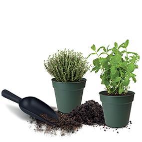 33 Cm 13 Liters Elho Green Basics Kartoffeltopf 33X25,7 Cm Lebhaft Schwarz