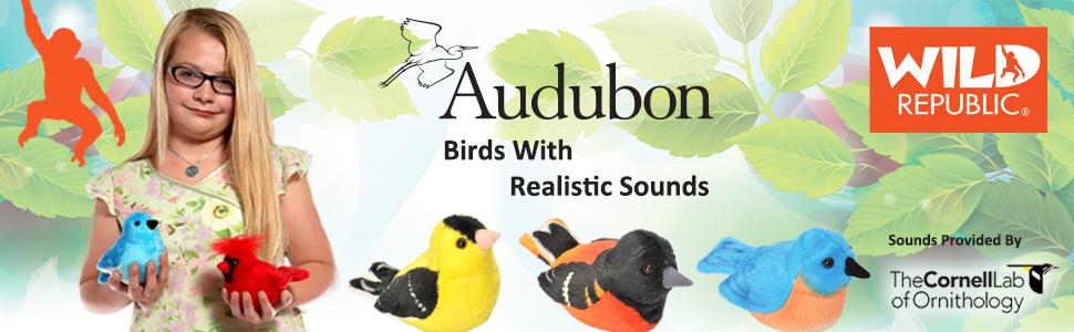 Audubon Birds A+