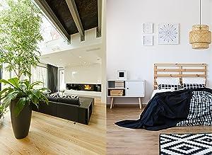 Digitaler Funk-Wecker mit Monatskalender 60.2529.54 Anwendung Wohnraum