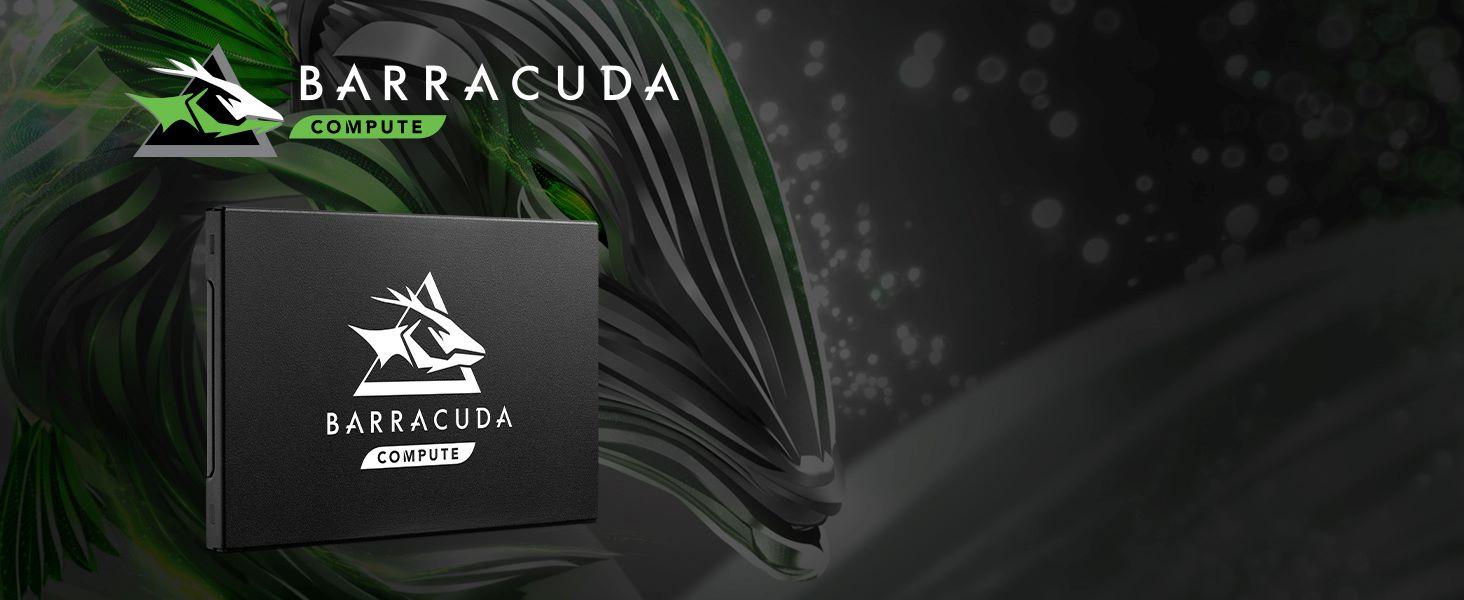 Barracuda Compute