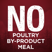 No poultry by product meal