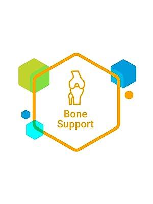 Bone Support Supplement