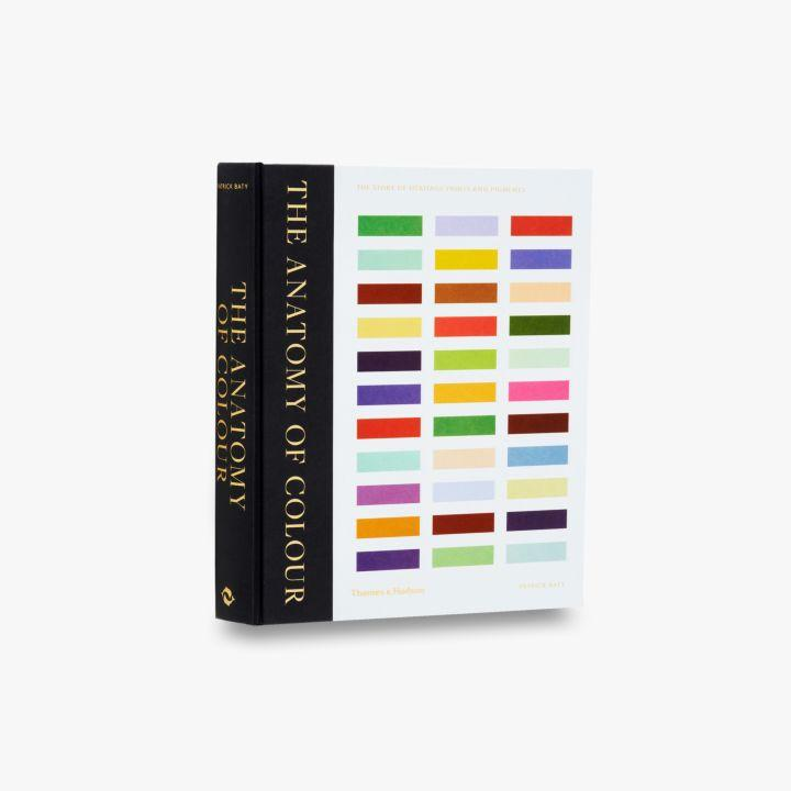 Outstanding The Anatomy Of Inspiration - Anatomy And Physiology ...