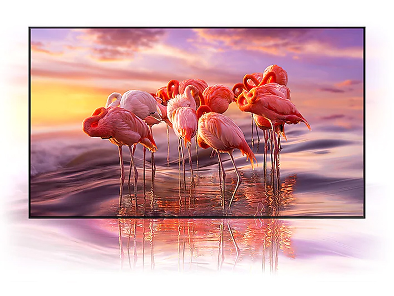 QLED TV with colorful scene of flamingos