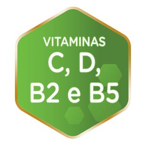 vitaminas c,d, b2 e b5