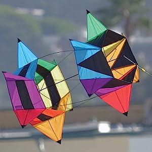 Wind N Sun - A Pair Of Kites