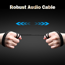 Robust Audio Cable