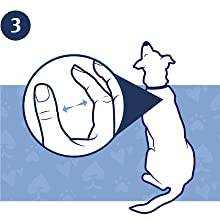 Part your dog's fur between her shoulder blades and invert the tube.