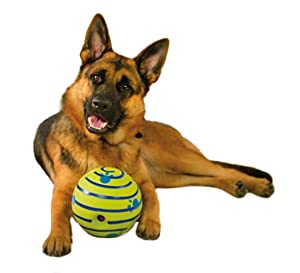 tv dog toy ball lose weight