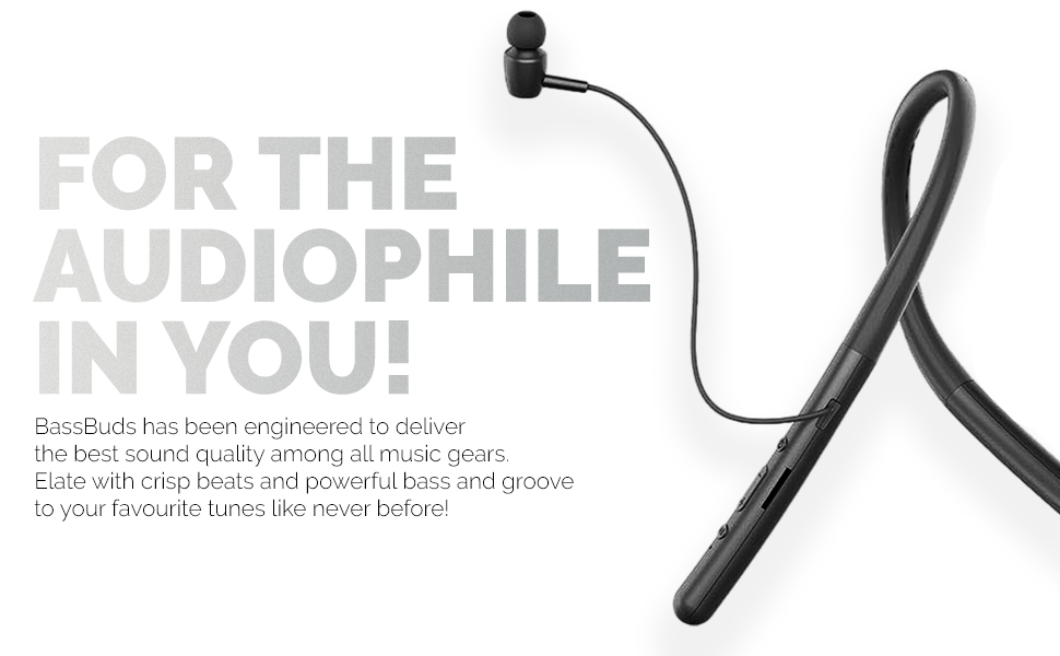 for the audiophile in you