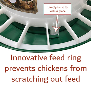 innovative feed ring prevents chickens from scratching out food