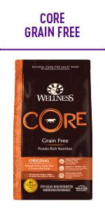 Wellness CORE Dry Dog Food Grain Free
