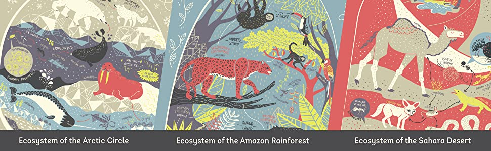 rachel Ignotofsky;women in science;gifts for kids;gifts for children;science books;earth science