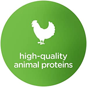 High Quality Animal Proteins, Novel Proteins, Healthy Dog Food, High Protein, Chicken Dog Food