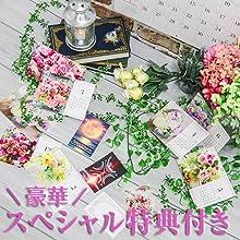 miniカレンダー&カード