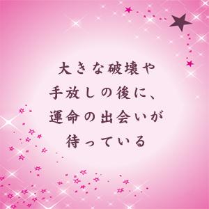 星を使えば運命 2.jpg