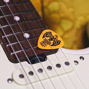 everlast guitar picks