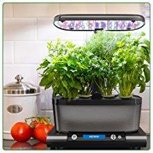 best-indoor-garden-experience