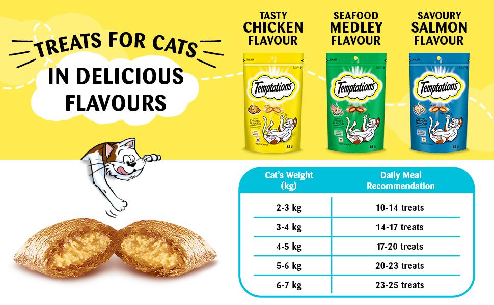 Temptations, cat treats, cat food, cat pouch , tempting tuna treat, Fish food for cat,