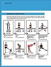 Stretching programs - Combat sports