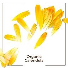 calendula organic
