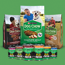 Purina Dog Chow dry and wet dog food varieties