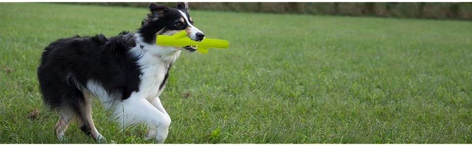 Pet Supplies : Pet Chew Toys : Hyper Pet Chewz Dog Toys