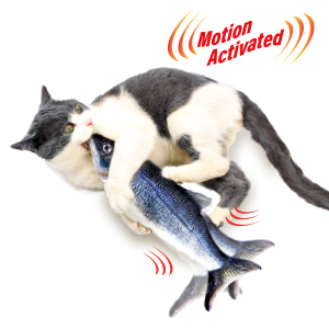 Flippity Fish and cat