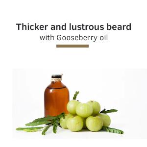 thicker beard, lustrous  beard, gooseberry oil, beard care