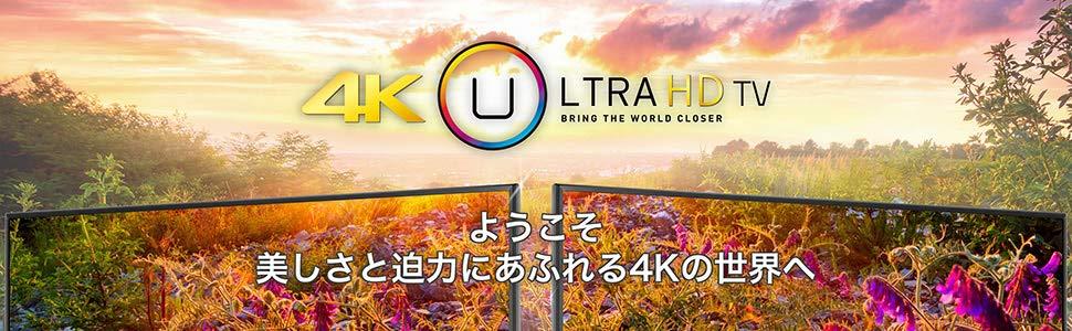 Hisense ハイセンス TV テレビ 4K A6100 HDTV ULTRA