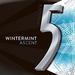 Wintermint ASCENT 5 GUM