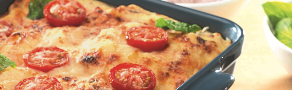 Emile Henry Lasagna amp; Roasting Dish