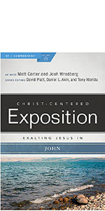 Exalting Jesus in John, John CCE, John Bible commentary, Study the book of John, Gospel Commentary