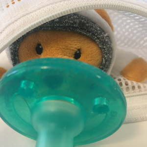 wubbanub bear infant baby pacifier