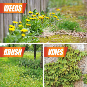 Effectively kills weeds, brush and vine