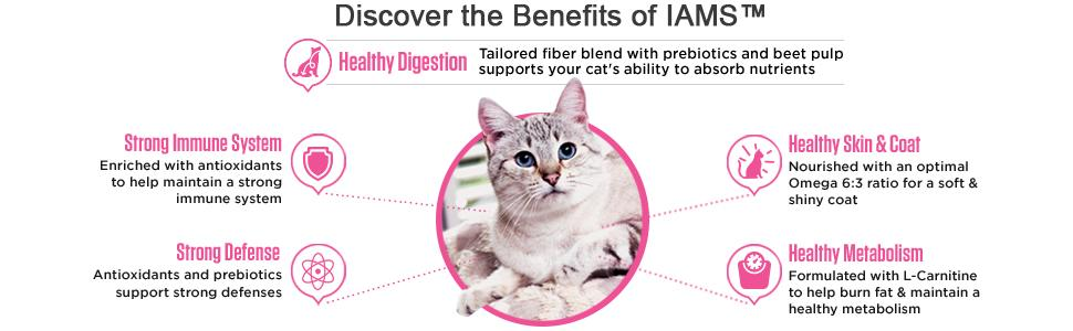 Amazon Com Iams Proactive Health Adult Healthy Digestion