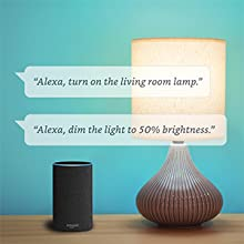 Connect your smart light bulb with Alexa App