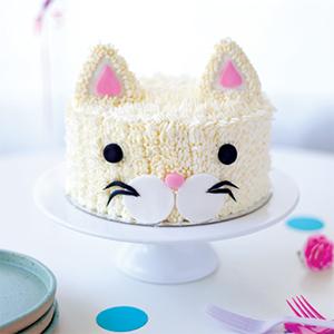 Pet Foods & Water Bowl Impartial Cat Aussie Stock!