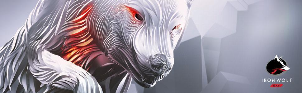 Seagate Iron Wolf