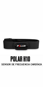 Polar H10 Sensor de frecuencia cardíaca - ANT+, Bluetooth, ECG resistente al agua con banda elastica pectoral - Negro Talla M/XXL