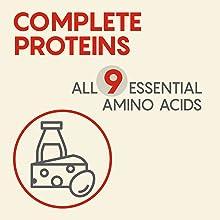 Nine Essential Amino Acids