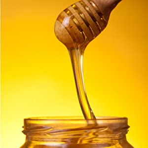 beekeeping for dummies, honey, honeybees