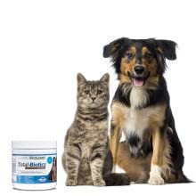 Probiotics with prebiotics for animals elimination support