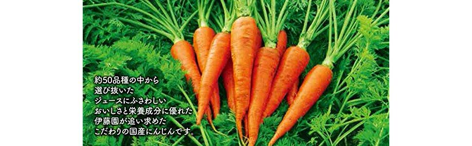 伊藤園 1日分の野菜 朱衣 人参