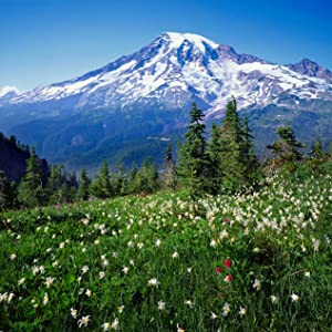 tatoosh range mount ranier national park pinnacle saddle trail
