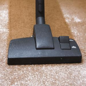 Amazon Com Simple Solution Urine Dry Carpet Powder